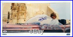 MARK HAMILL Signed Luke Skywalker STAR WARS 10X20 Photo PSA/DNA #U55893